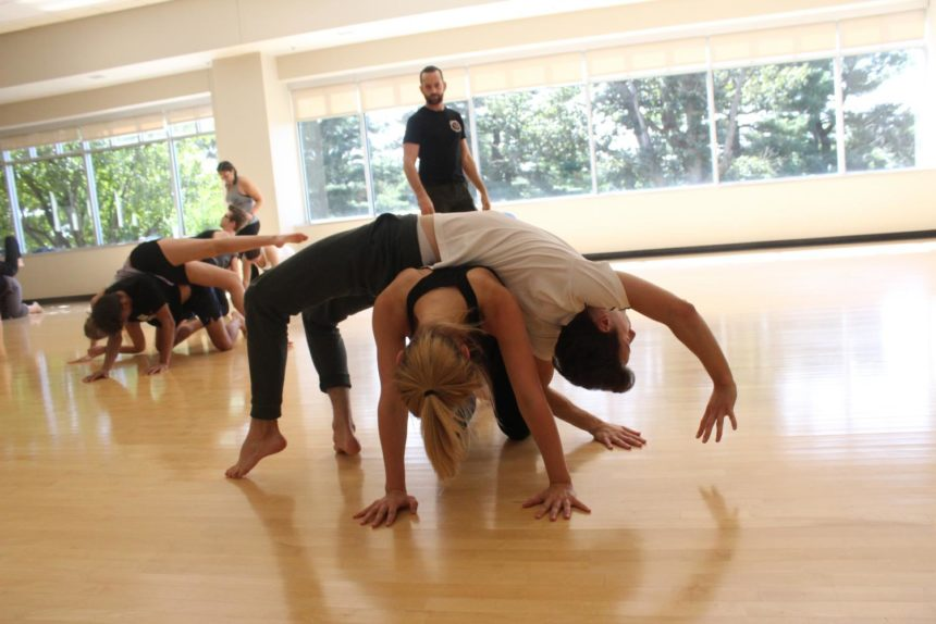 Read what Luther College has to say about PUSH Physical Theatre